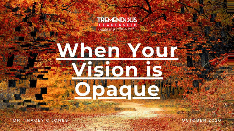 When Your Vision is Opaque