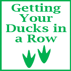 "Pet Publishing ""Getting Your Ducks in a Row"" Package"