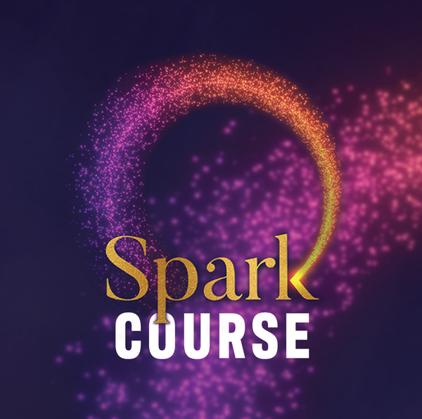 SPARK Course: 7 Live Zoom Calls
