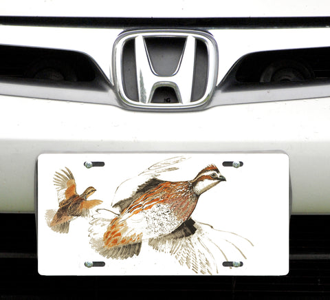 License plate, Bobwhite Quail