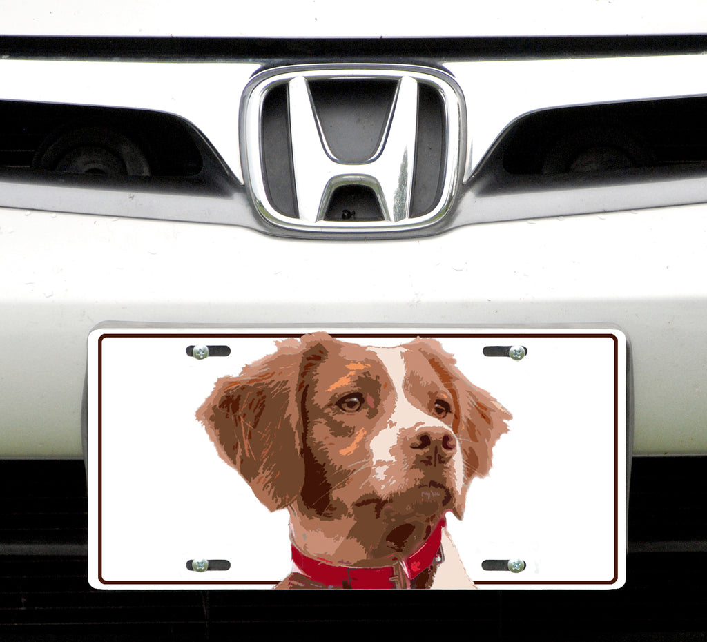 License plate,Brittany Spaniel