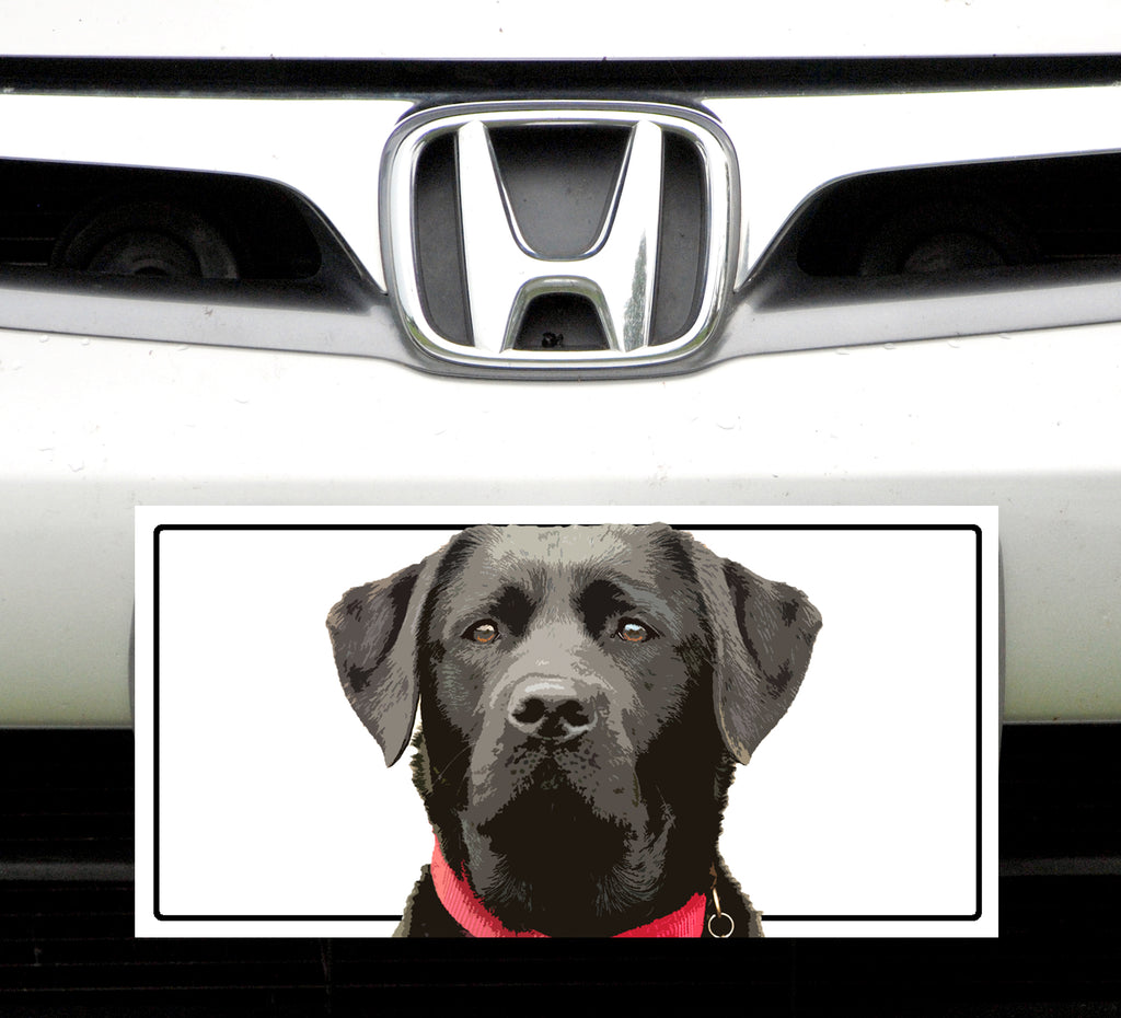 License Plate,  Black Lab