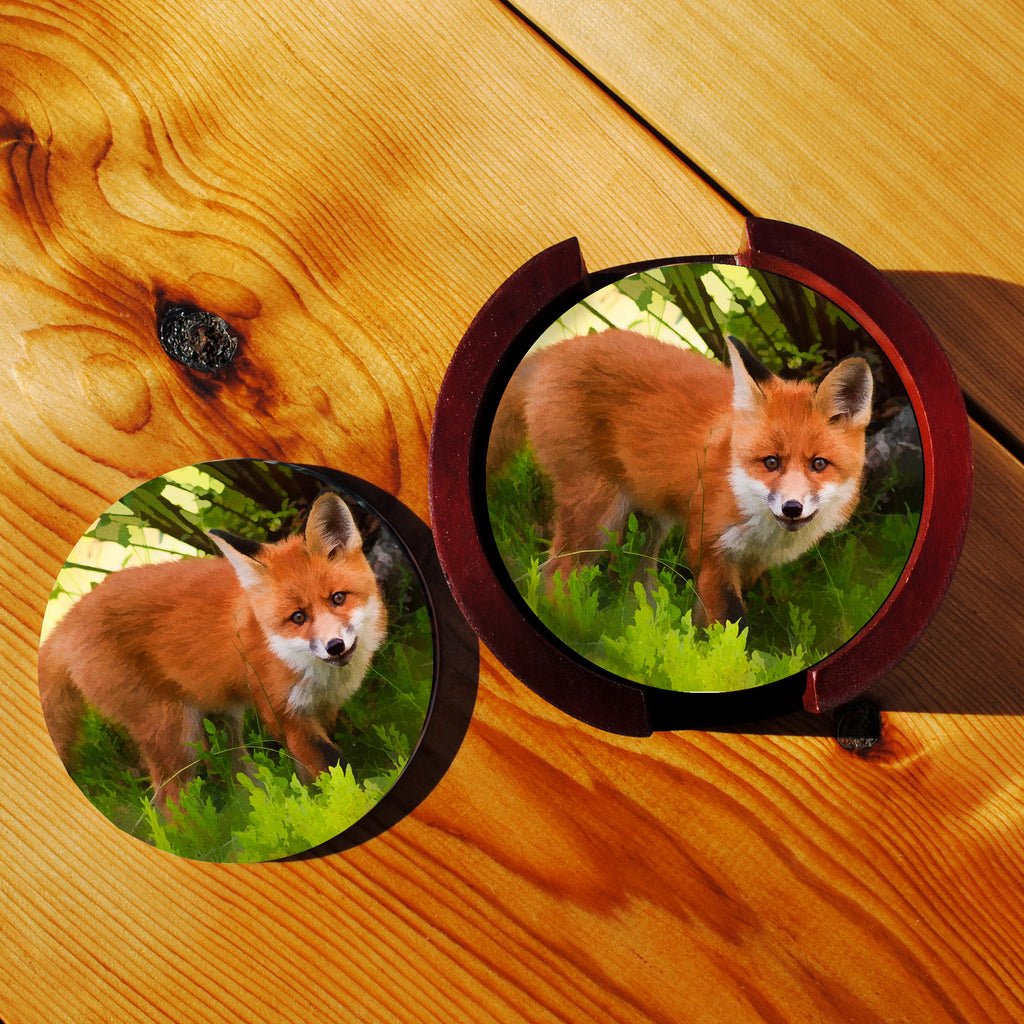 Red Fox Sandstone Coasters in Wood Rack