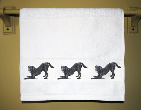 Lab Towel