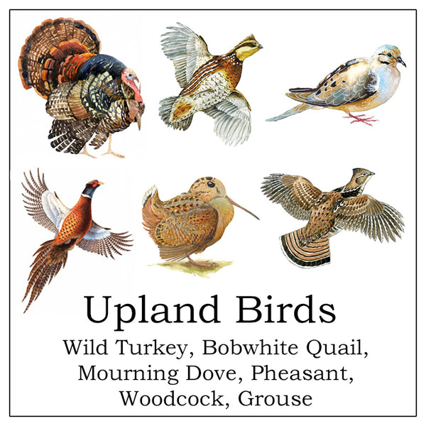 Table Linens, Set of Six - Woodland Upland Birds