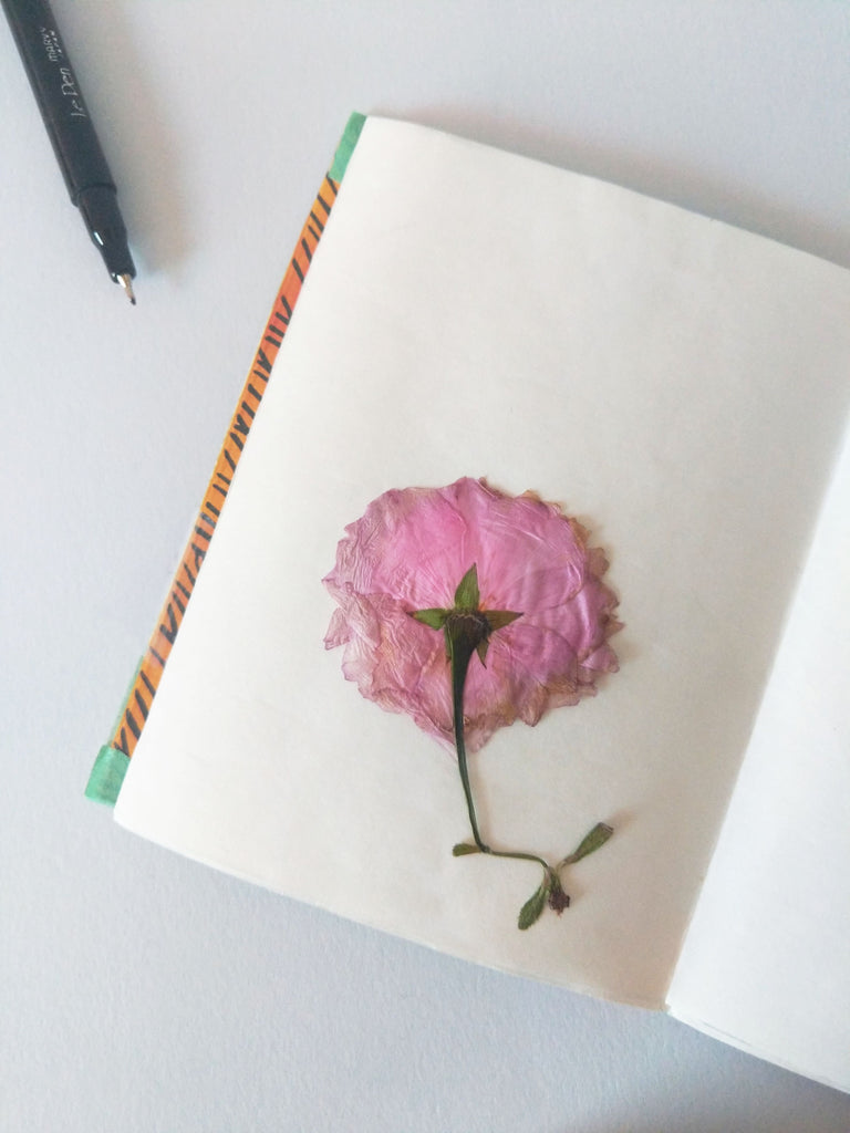 Pressed Flower in a Book