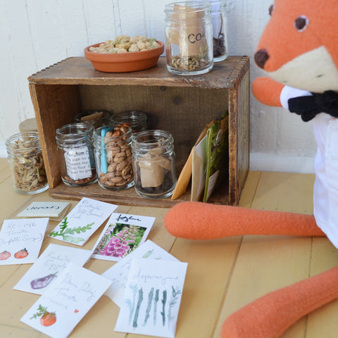Reginald Fox and his seed collection
