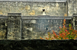 """Alamo Wall"" ~ Close up image of section of rock wall from the Alamo Mission in San Antonio, TX. 2011"