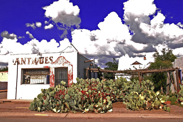 """Antiques"" ~ Antiques building in Old Mesilla, NM set against a rich blue sky and fluffy white clouds with jumble of cactus in front."
