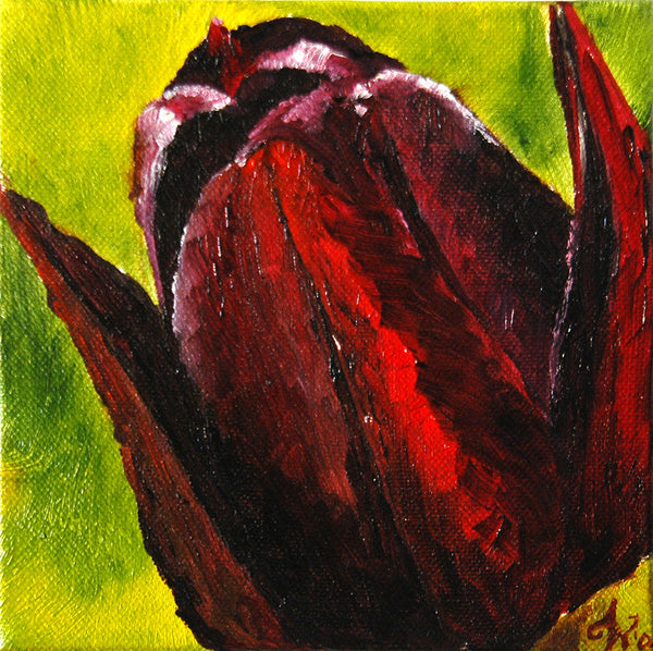 """Black Tulip"" ~ Oil painting by Ann Woodal of dark red tulip."