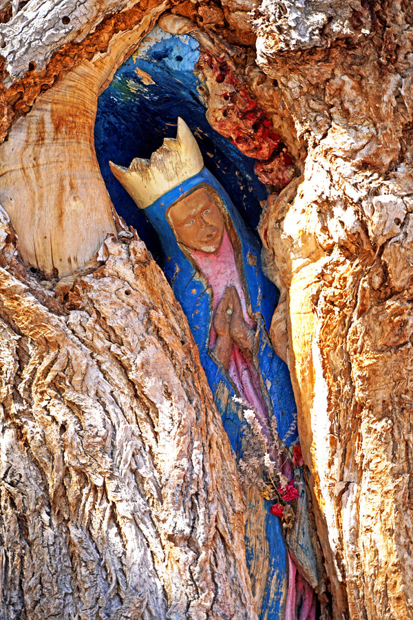 Cottonwood Madonna