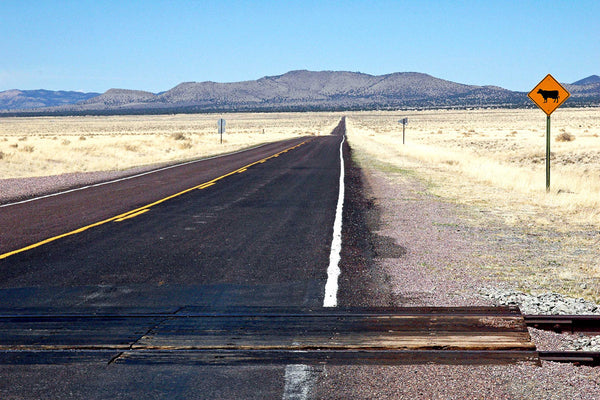 """Cow Xing"" ~ Open stretch of desert road with a ""watch for cows"" sign. photo by Ann Woodall"