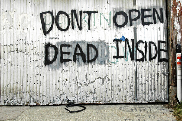 """Don't Open Dead Inside"" ~ Graffiti from Walking Dead sprayed on a garage door. Photo by Ann Woodall"