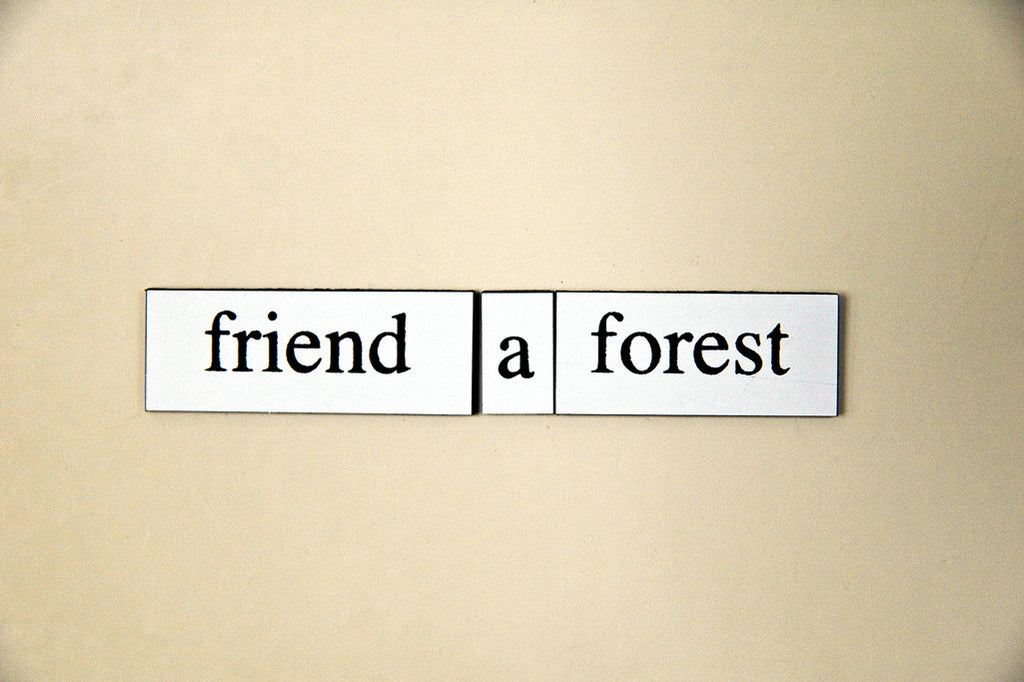 """Friend a Forest"" ~ Words from my fridge. Photo by Ann Woodall"