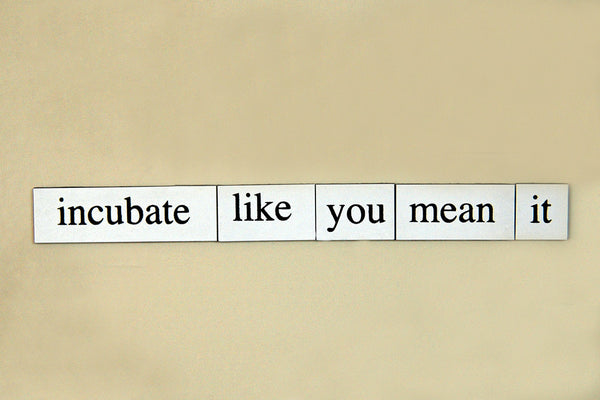 """Incubate Like You Mean It"" ~ Words from my fridge. Photo by Ann Woodall."
