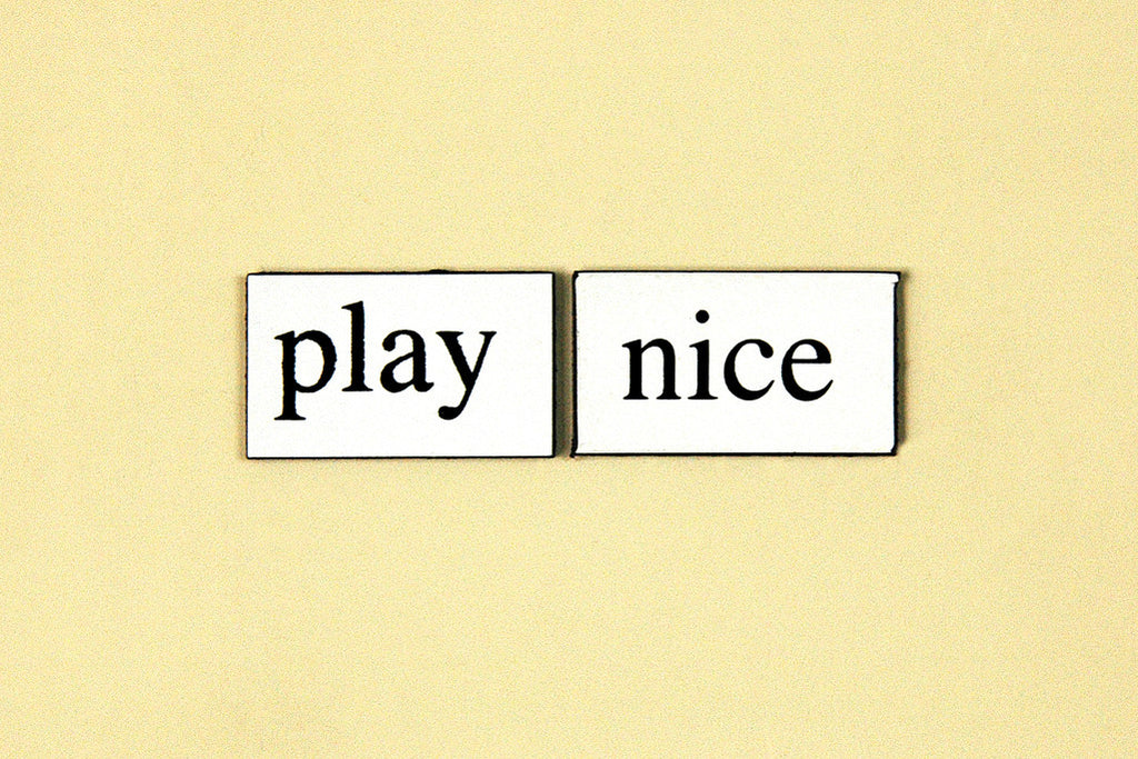 """Play Nice"" ~ Words from my fridge. Photo by Ann Woodall"