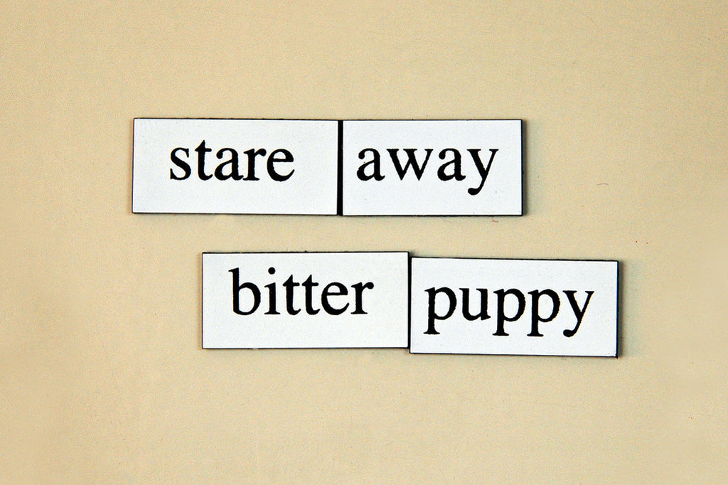 """Stare Away Bitter Puppy"" ~ Words from my fridge. Photo by Ann Woodall"