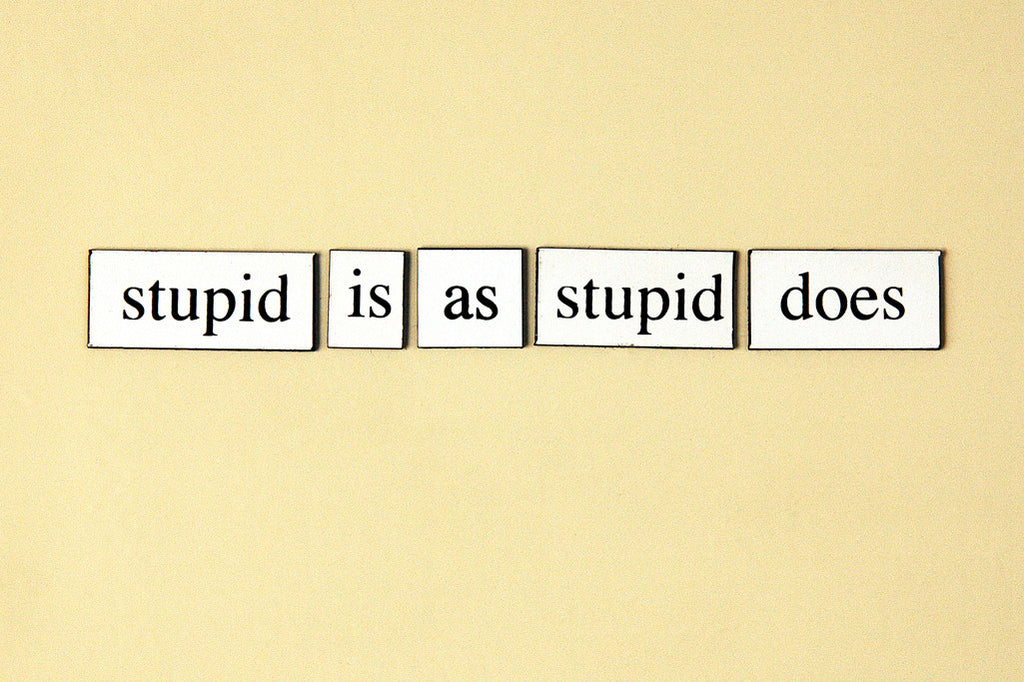 """Stupid Is As Stupid Does"" ~ Words from my fridge. Photo by Ann Woodall"