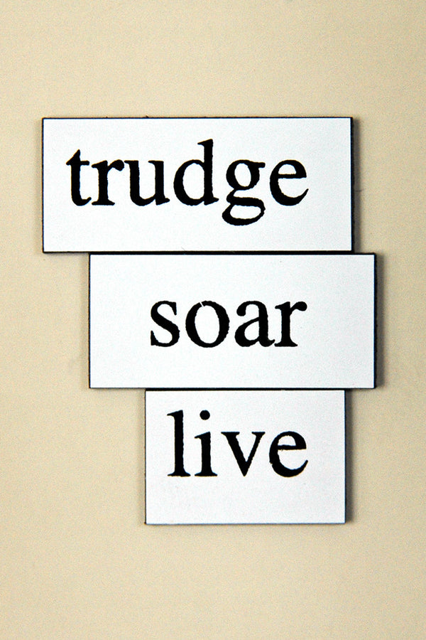 """Trudge Soar Live"" ~ Words from my fridge. Photo by Ann Woodall"