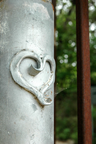 """Heart"" ~ Heart detail on the metal back gate of the Zilker Botanical Gardens in Austin, TX. Photo by Ann Woodall"