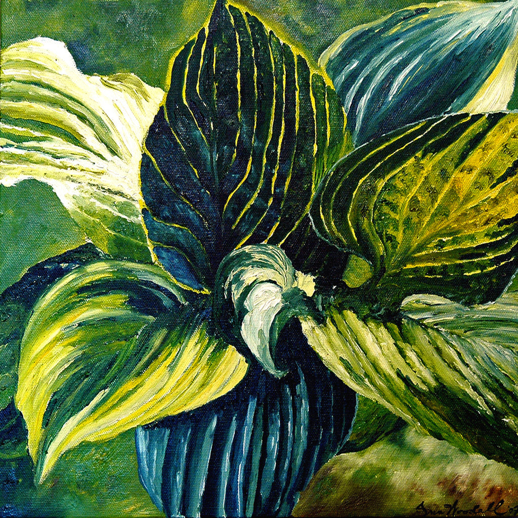 """Hostas"" ~ Painting of a hosta plant. Photo by Ann Woodall"