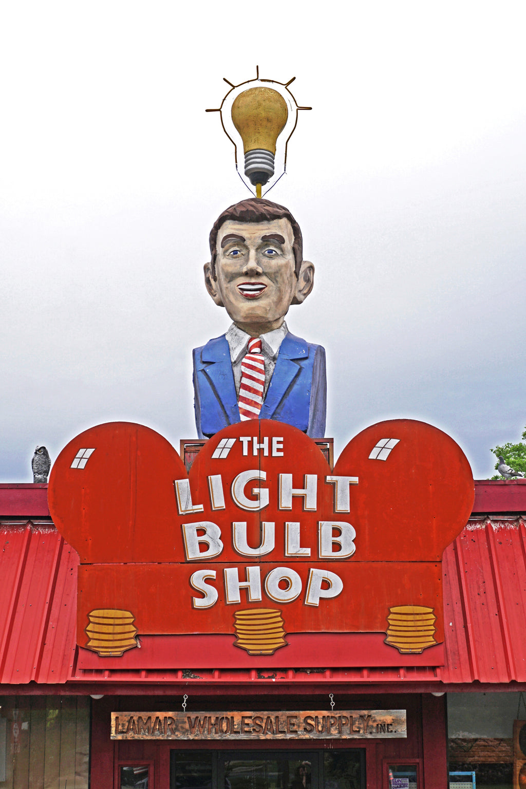 Light Bulb Shop Man