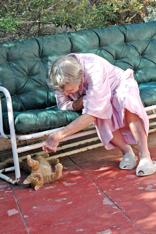 """Mimi and Kitty"" ~ Mimi on her patio with her small orange tabby kitten. Photo by Ann Woodall"