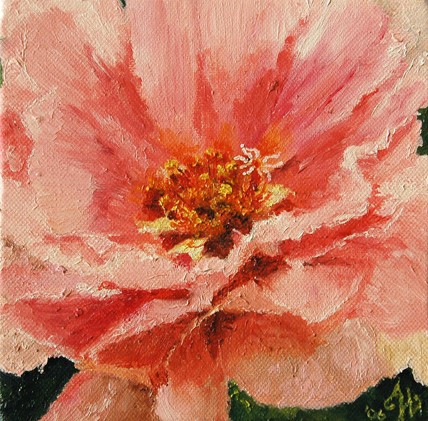 """Moss Rose"" ~ Painting of a moss rose flower. Photo and painting by Ann Woodall"