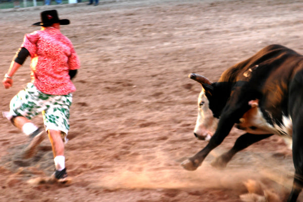 """Playground"" ~ A bull chases rodeo clown in Del Rio, TX. Photo by Ann Woodall"