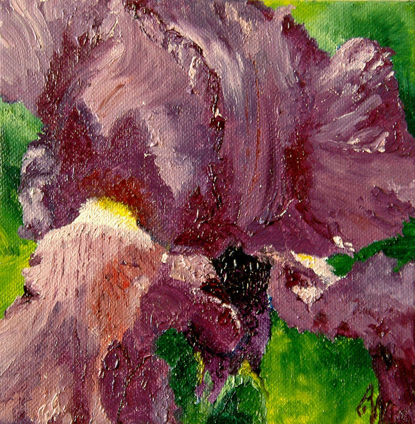 """Purple Iris"" ~ Oil painting of a purple iris. Painting and photo by Ann Woodall"