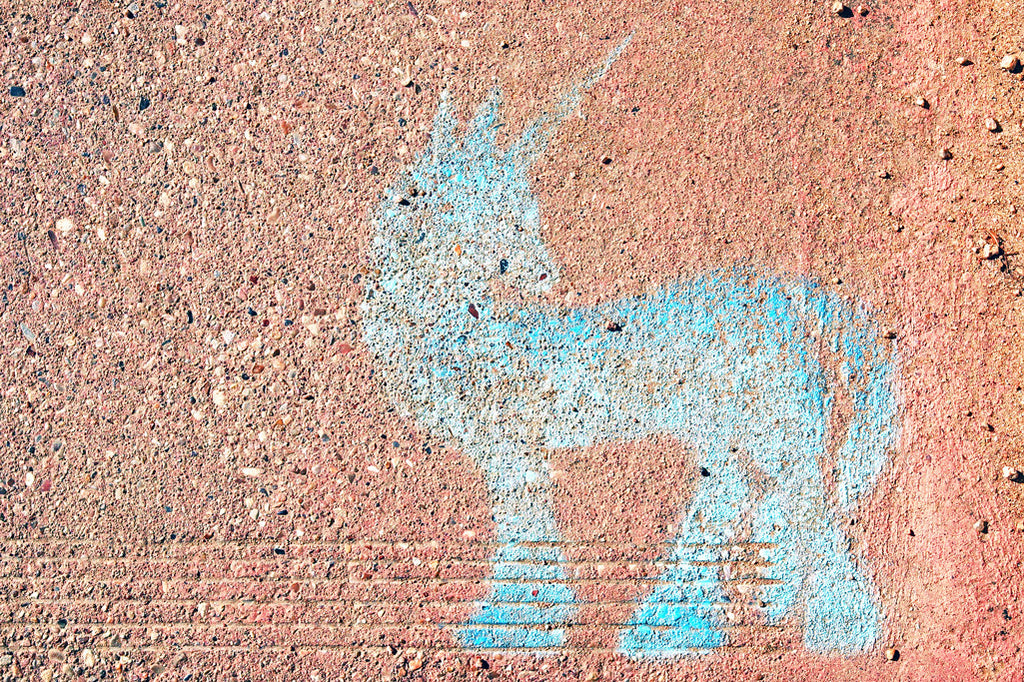 """Street Unicorn"" ~ Unicorn street art in Austin, TX. Photo by Ann Woodall"