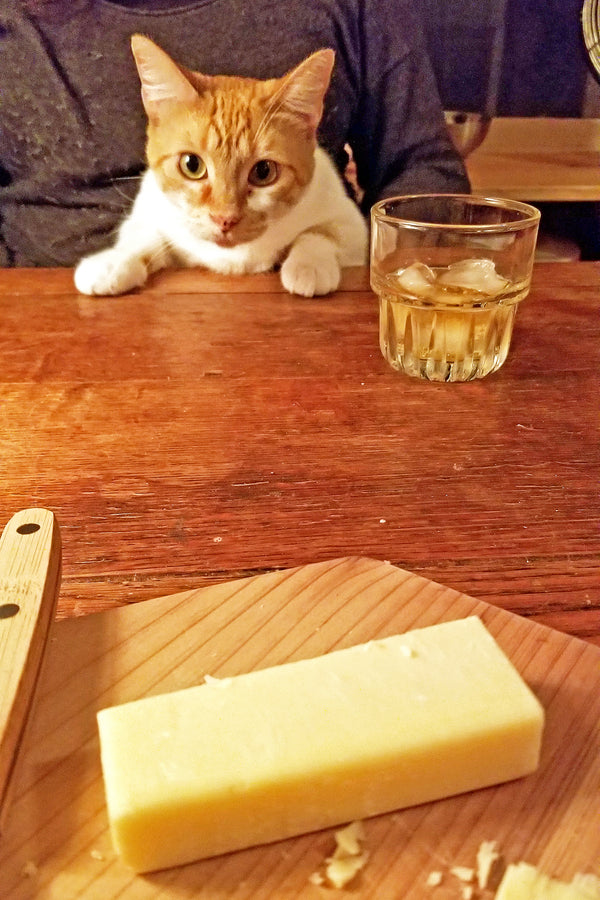 Whiskey & Cheese