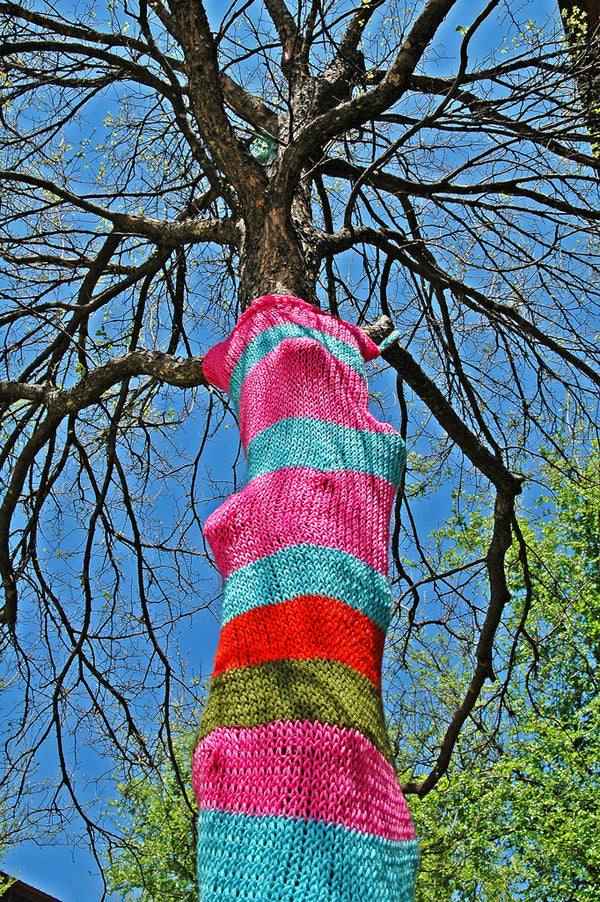 """Yarn Bomb #1"" ~ A tree with a knitted tree sweater. Photo by Ann Woodall"