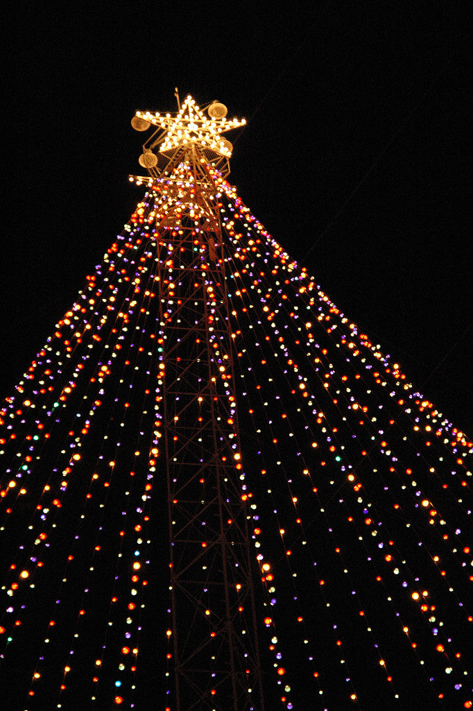 """Zilker Xmas Tree #2"" ~ The Zilker Park Christmas tree in Austin, TX. Photo by Ann Woodall"