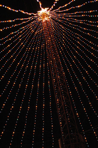 """Zilker Xmas Tree #3"" ~ The Zilker Park Christmas tree in Austin, TX. Photo by Ann Woodall"