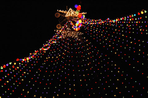 """Zilker Xmas Tree #6"" ~ The Zilker Park Christmas tree in Austin, TX. Photo by Ann Woodall"