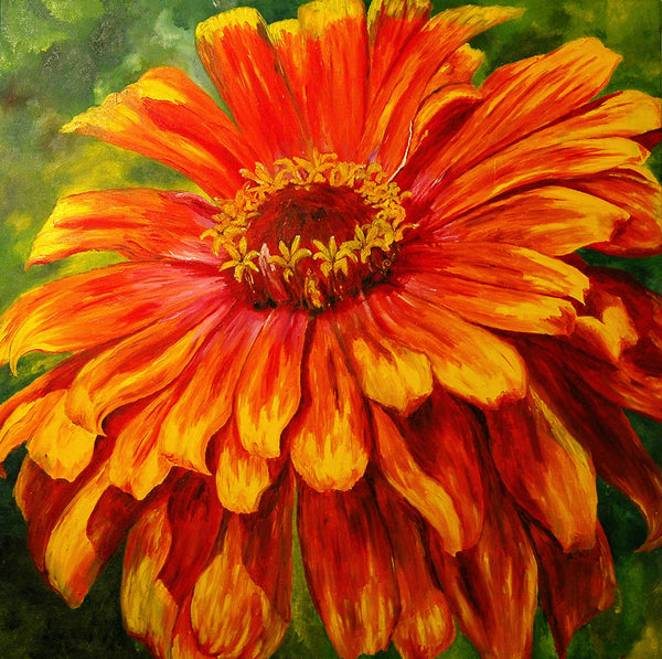 """Zinnia"" ~ Oil painting of an orange and yellow zinnia flower. Photo and painting by Ann Woodall"