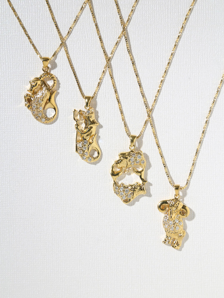 The Star Sign Necklaces Capricorn - Aries