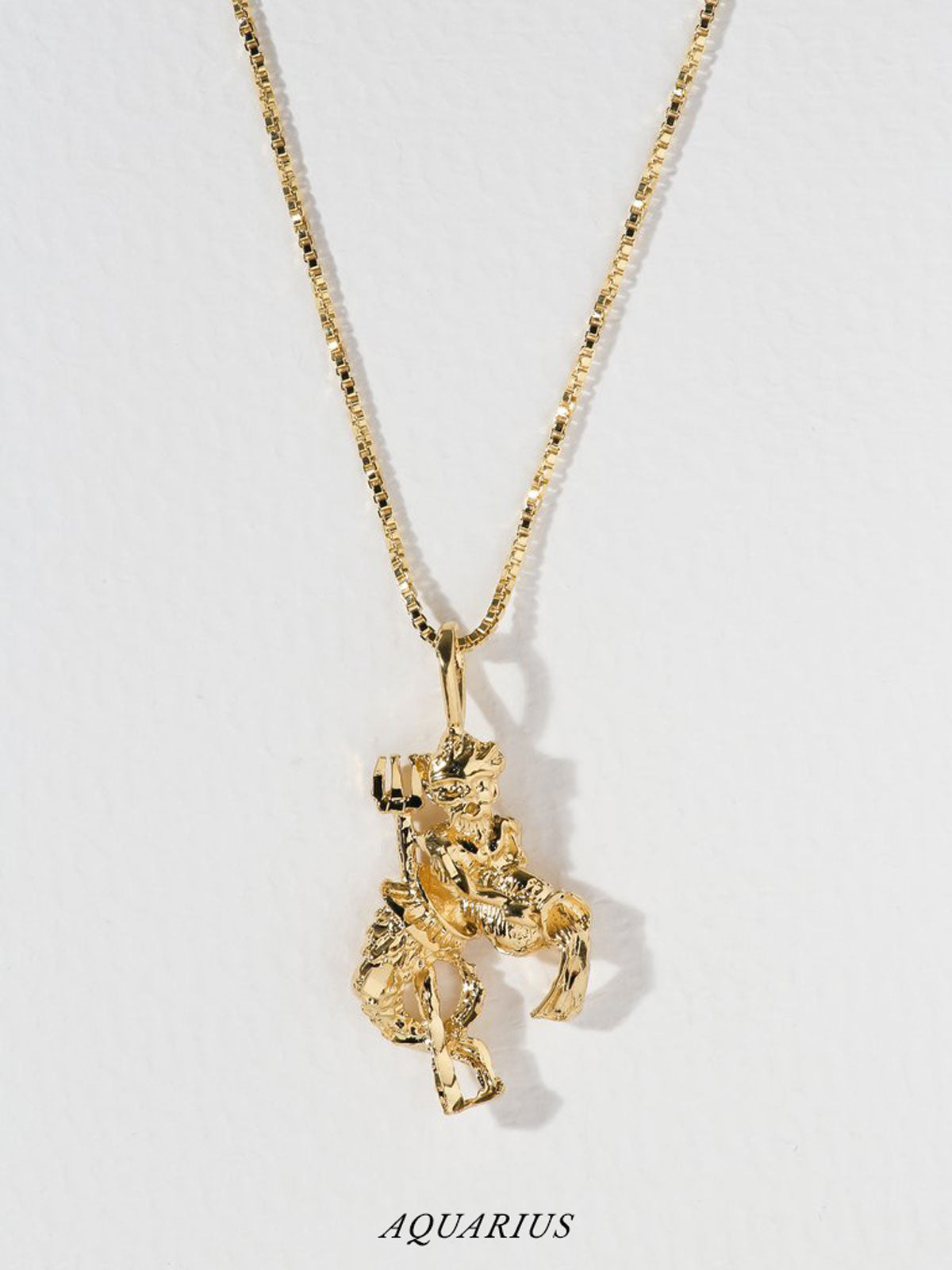 Necklaces The Zodiac Sign Necklaces CAPRICORN - ARIES Vanessa Mooney