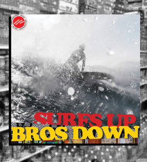 Surfs Up Bros Down Zine issue 001