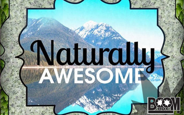 NATURALLY AWESOME BOOM!BOX: SUBSCRIPTION CONTENT RECAP