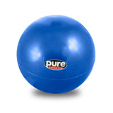 Pure Fitness 3lb Pilates Weighted Toning Ball - Pure Fitness