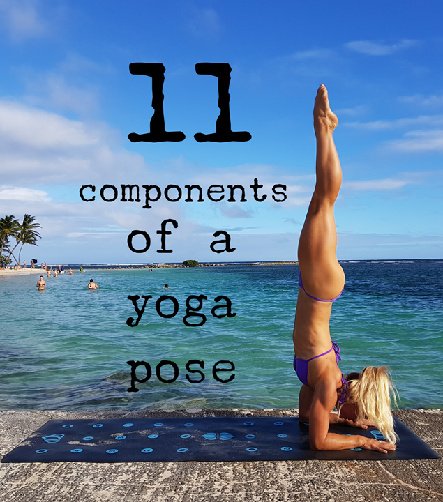 The 11 Components of a Yoga Pose