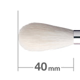 G5538BkSL Highlight Brush [H2913]