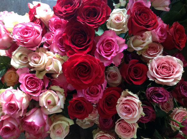 Roses by the Dozen