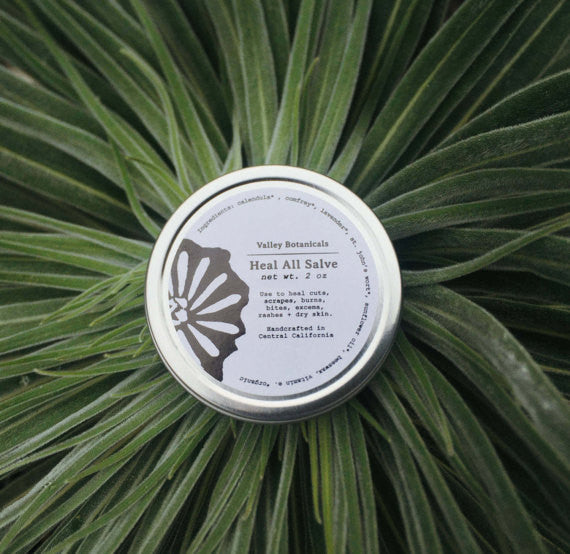 Valley Botanical Heal All Salve