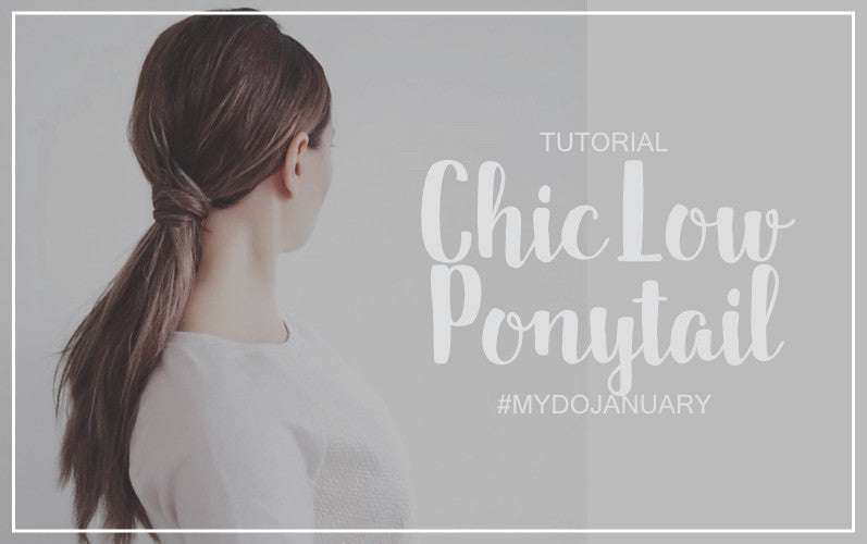 Chic Low Ponytail