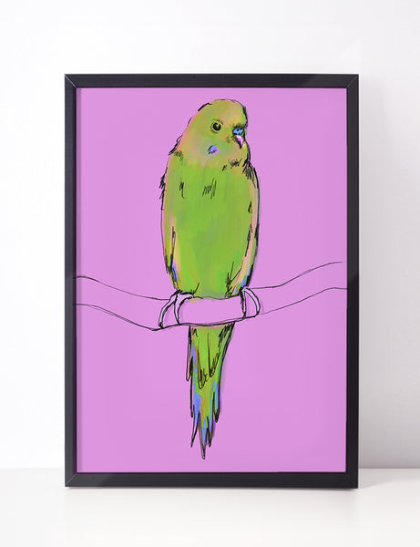 'When' - The Green Budgie