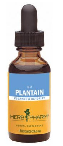 HERB PHARM ORGANIC PLANTAIN, 4 OUNCES