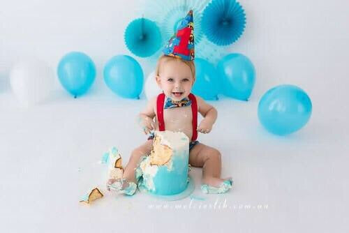 Paw Patrol Inspired Baby Cake Smash Blue / First Birthday Outfit